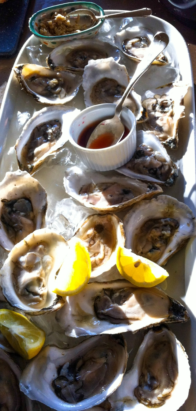 oysters-04