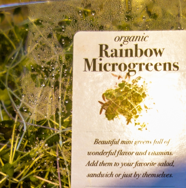 Rainbow Microgreens