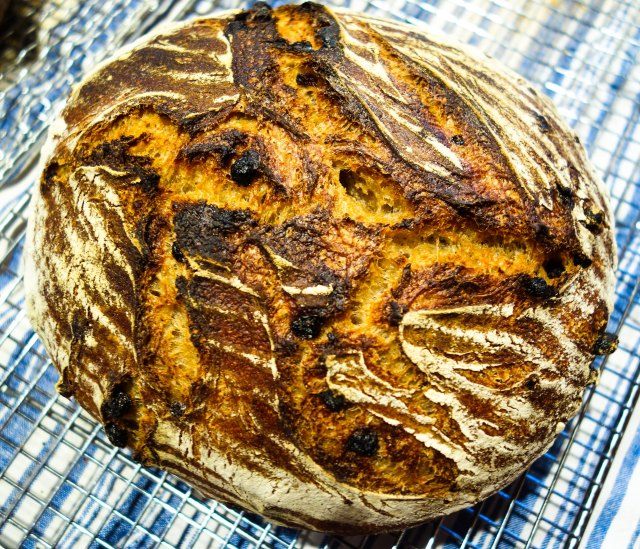 Levain with currants inside
