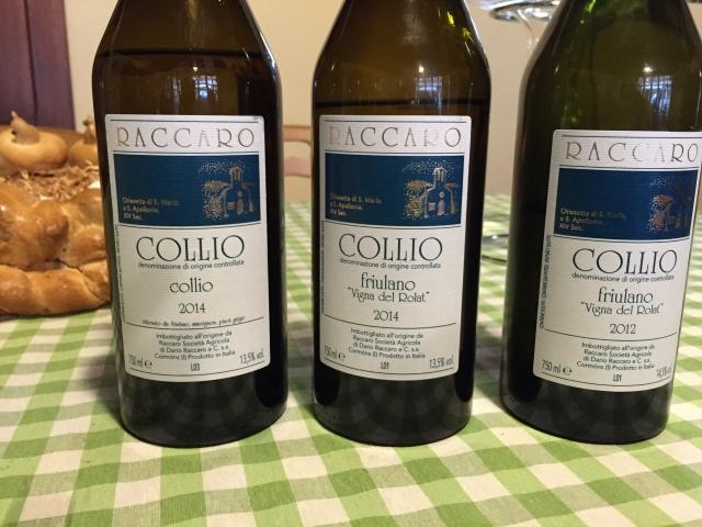 Combined Slovenia - Friuli - Venice - 041